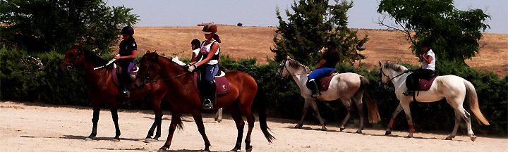 ALBERGUE GRANJA ESCUELA SEGOVIA www.puertadelcampo.es GRANJA ESCUELA HIPICA